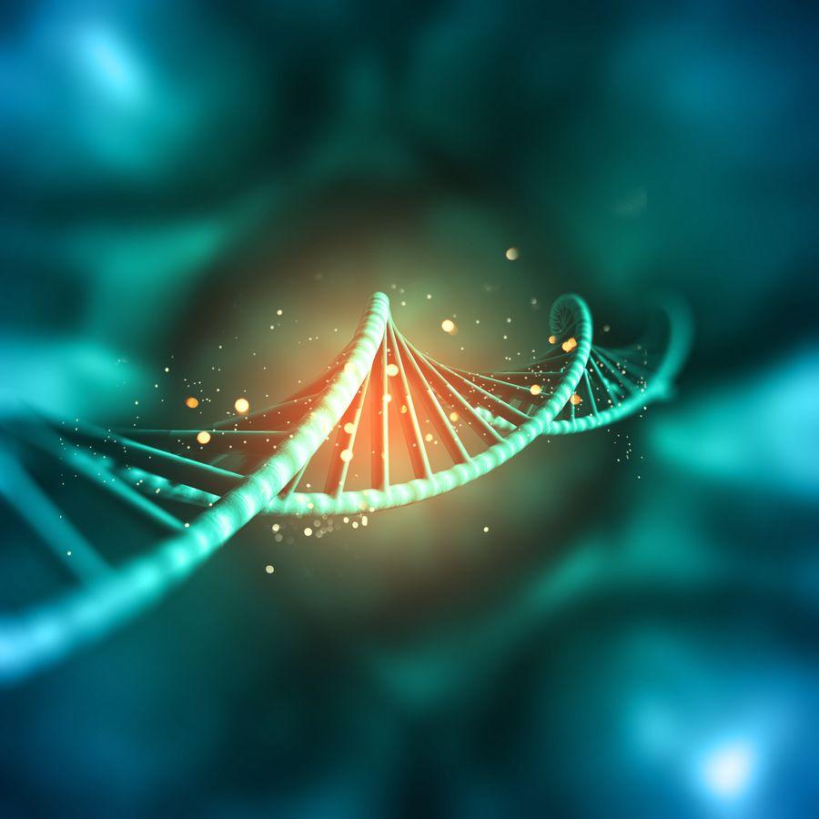 80% des revenus issus des adhésions sont utilisés pour la recherche scientifique